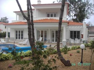 Luxury Villa Aislinn with Heated Pool & Hot Tub!, Obidos