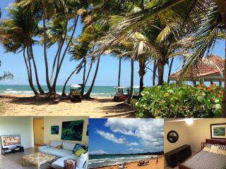 Near Rio Mar hotel, Rio Grande Puerto Rico