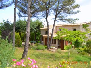 Super Family Mas Provençal for 12 with Pool