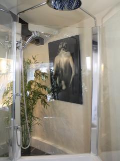 Fabulous multi function shower