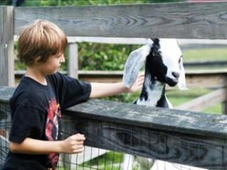 Al final del día te % 39ll recibidos a la Trillium por sus buenos amigos en el jardín en el lago Highland