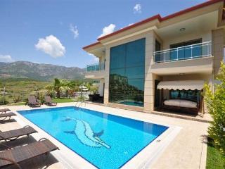Villa Riveria Nr.1 in Türkei, Kargicak