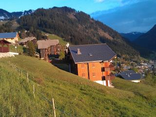 Summer view of apartment and Chatel below