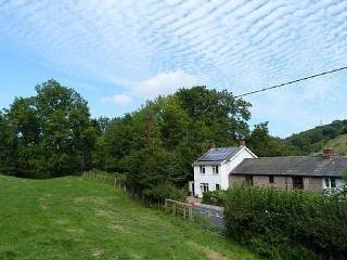 Y Rhosyn a rural paradise,  wildlife haven - 78916, Knighton