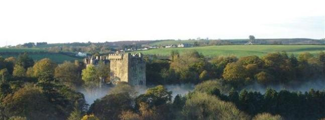 View of Blarney Castle from House - Beautiful Home in Charming Blarney Village