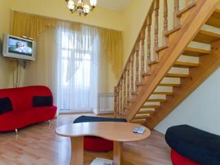 Cozy kiev apartment in center, Kiev