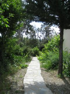 One of the many shady garden paths