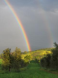 Rainbow at Podere Salicotto