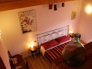 Wine Room - B&B La Bella Vigna
