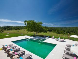 Luxury Villa Poropati with pool, Groznjan-Istra