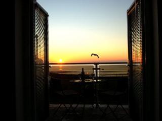 Craig Gwyn Fabulous Beach Front House