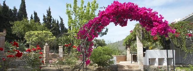 Garden View. Bounganvilla Arch.