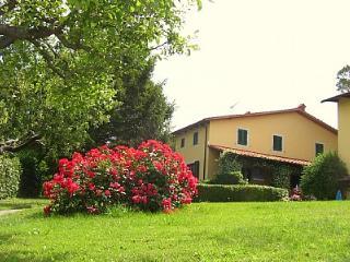 Appartamento Italo C, Lamporecchio