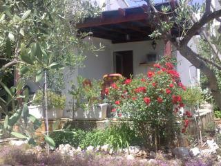 House Oliva, Stari Grad
