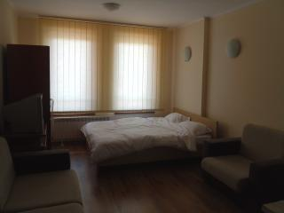 Cedarlodge 4 studio apartment, Bansko