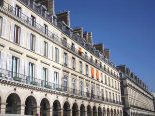 parisbeapartofit - Rue de Rivoli Tuileries (1327)