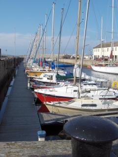 Nearby Lossiemouth Marina, good for a trip to see the dolphins?