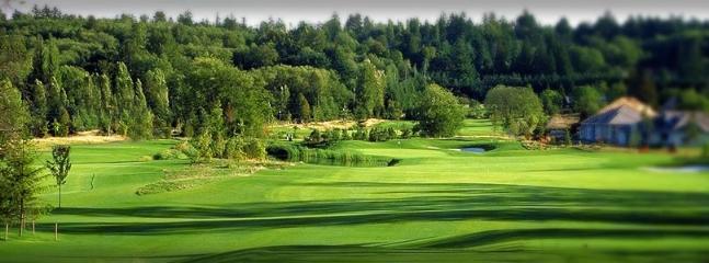 Morgan Creek Golf Course 15 minutes