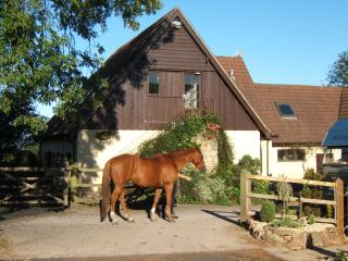 Stable Loft rural Holiday apartment Cheddar. Luxurious, spacious, light & warm. Beautiful views