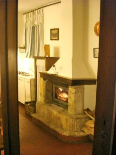 Canale - living room and fireplace