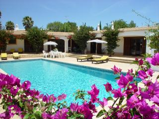 Villa BELO HORIZONTE, Pool,10min walk to Carvoeiro