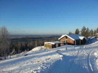 Sisselrotkampen 615, Oslo