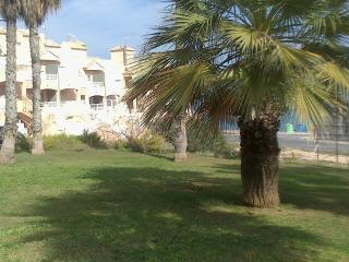 Alicante, Torrevieja La Mata