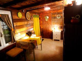 Grazioso Appartamentino In Trifamiliare Indipendente, Fiumicino