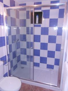 Large walk in shower in the main bathroom