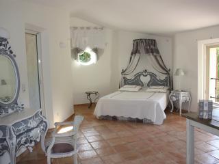 Suite de luxe avec 2 terrasses, l'une sur le parc, l'autre sur la Montagne Sainte-Victoire