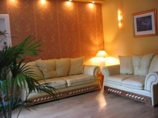 Beautiful Designer Lounge