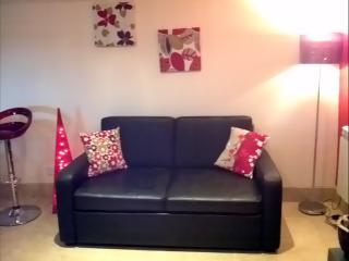 We have two sofa double sofa beds that can sleep  guests