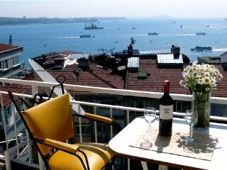 Old City & Bos.Vus n Best Area-C2, 50% off winter, Kozakli