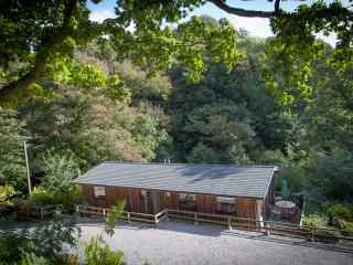 The Hide, Scandinavian Timber Lodge in South Devon