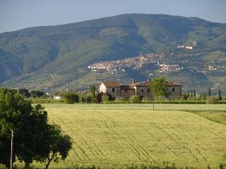 La Lombarda against Cortona backdrop