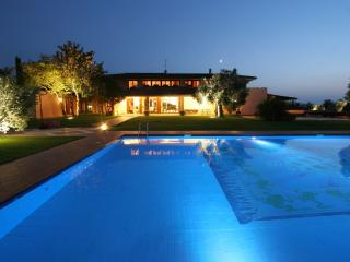 Luxury Rome Country Villa, Huge Pool, Sauna, BBQ, Weddings, Cooking Classes