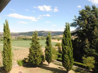 Cosy apartment in villa, Siena, pool and garden, Montalcino
