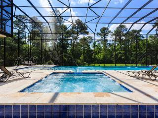 W150 - 12 Bedroom Luxurious Reunion Resort Mansion