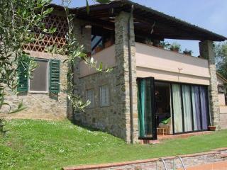 Villa swimming pool in Lucca