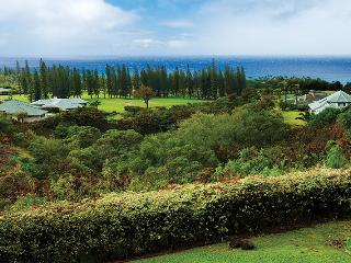 PANORAMIC VIEWS in PINEAPPLE HILL - 4 Bedroom / 4.5 Bath, Kapalua