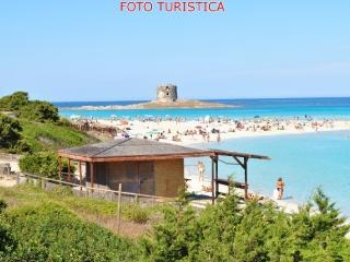 Casa vacanza Il Mirto -  zona Roccaruja/la Pelosa