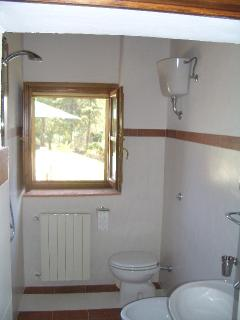 The bathroom includes a shower, sink, wc and bidet