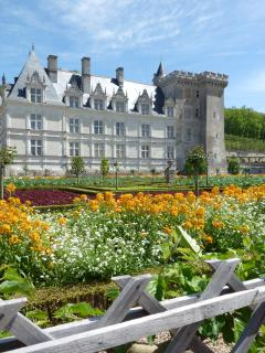 Villandry Chateau and gardens