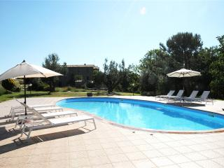 Naioli Farm holidays, Sangiovese studio apartment