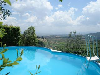 Apartment  With Private Pool And Garden,great View, Carmignano