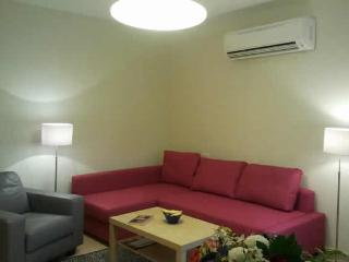 Remodled and comfertable 1 bedroom apartment in Emek Refaim, Jerusalem