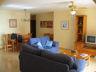 PalmMar Apartment...3 bedrooms, Palm Mar