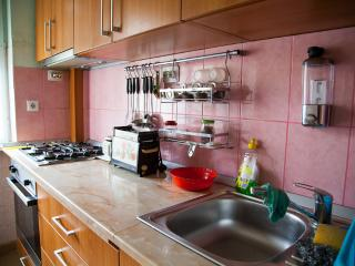 Entire Apartment in the city center, Timisoara