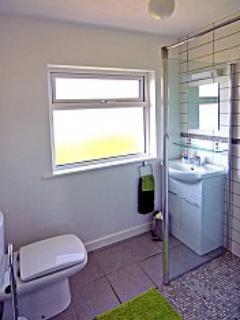 Bathroom with wetroom and electric shower