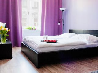 STUDIO APARTMENT IN PRAGUE CENTER, Praga